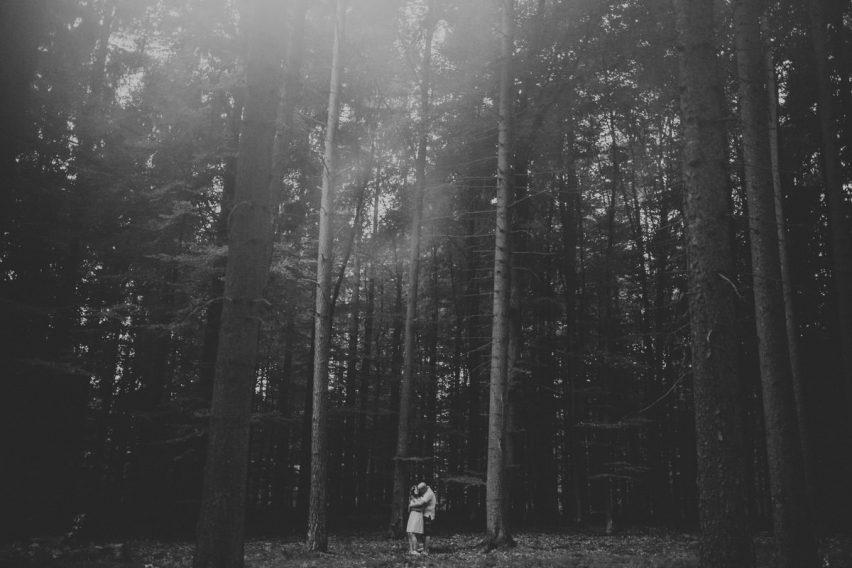 sesja zaręczynowa w lesie