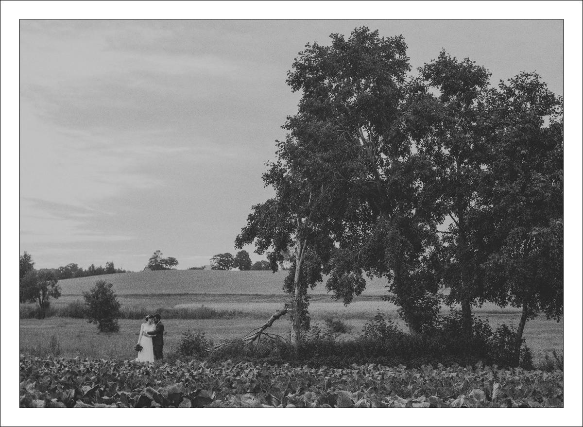 Fotografia Slubna Film Klisza Analog 00040