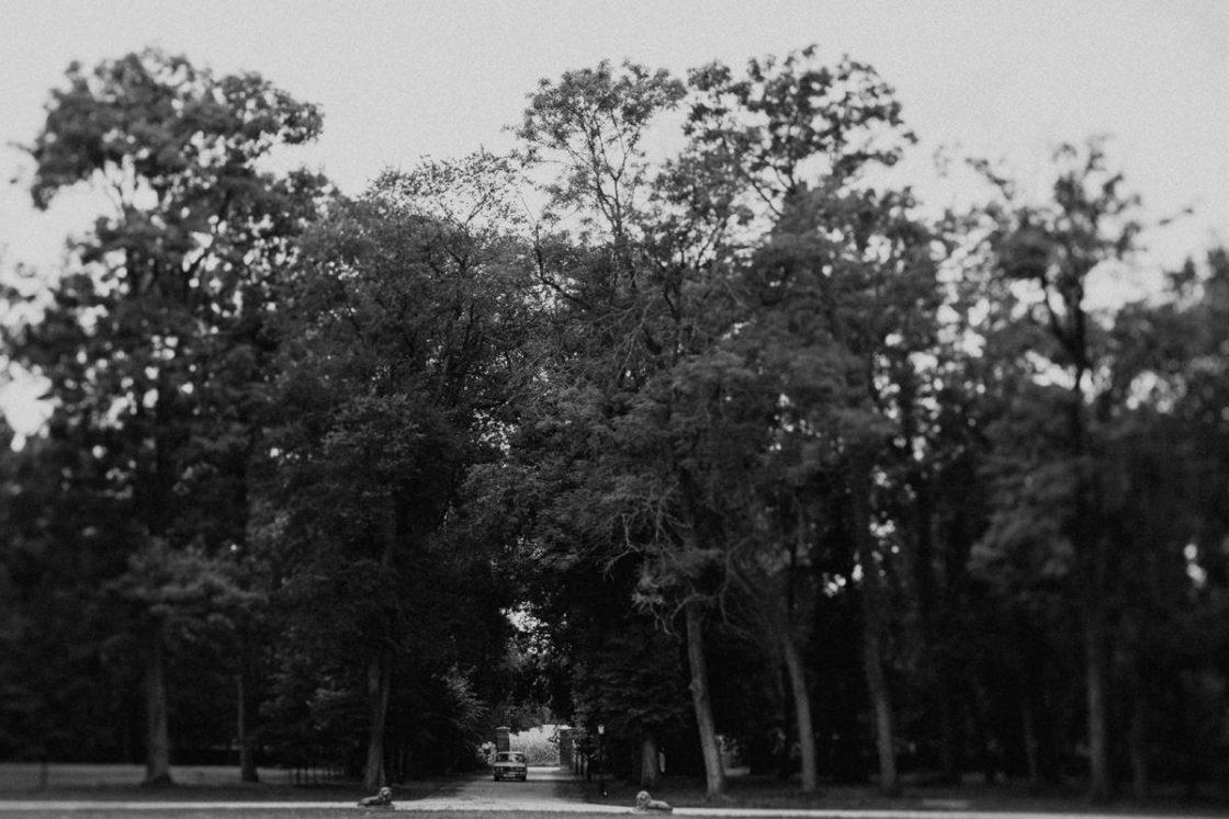 PALACE WIERZBICZANY – A WEDDING IN GNIEWKOWO 31
